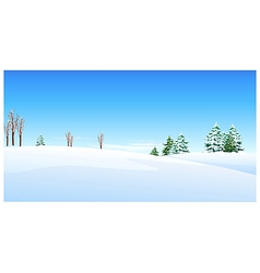 Fir trees snow landscape vector