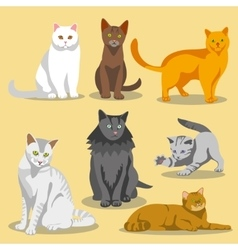 Cute cats with different colored fur and vector image