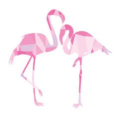 pink african beak beauty leg wildlife beach vector image vector image