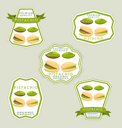 The theme pistachio vector