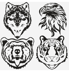 Tiger Eagle Wolf Bear logo set vector image