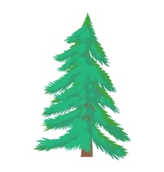 Fir tree icon cartoon style vector