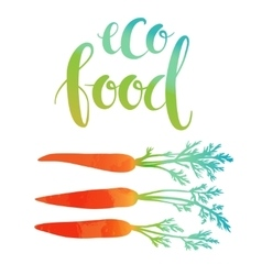 Carrots with eco food lettering vector