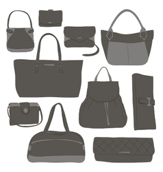 Collection of different women bags vector image vector image