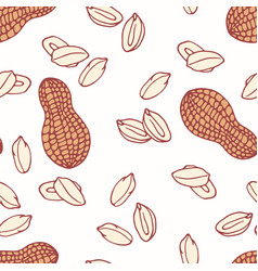 Hand drawn seamless pattern with peanut vector