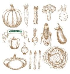 Garden and farm vegetables sketches set vector image vector image