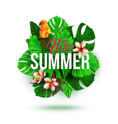 hello summer typographical background with vector image vector image