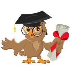 One owl diploma vector image