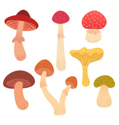 set of cartoon flat mushrooms vector image vector image