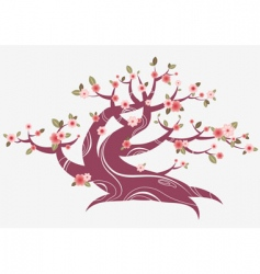 spring blossom tree vector image vector image