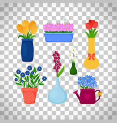 Spring flowers in pots and vases vector