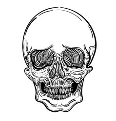 with a human skull gothic vector image vector image
