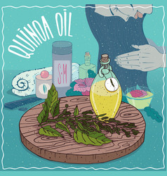 Quinoa oil used for hair care vector