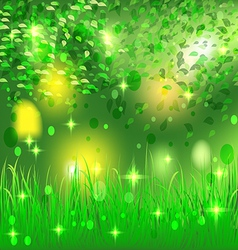 Beautiful bright abstract forest vector