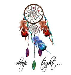 Dreamcatcher and agate vector