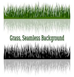 green and silhouette grass vector image