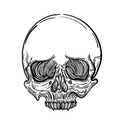With a human skull gothic vector