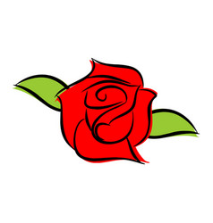 Red rose isolated flower and green leaves on vector