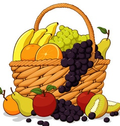 Variety of fresh fruits in a basket vector