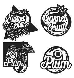 color vintage fruit emblems vector image vector image