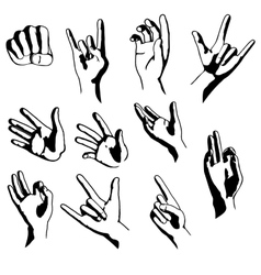 Hands in different positions vector image vector image