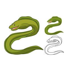 Moray eel vector