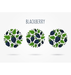 Blackberry round labels creative concept vector