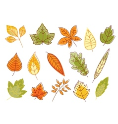 Autumnal colorful isolated leaves vector
