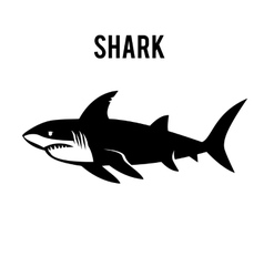 Great white shark sign logo on a white background vector image