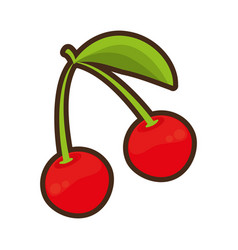 cherry fruit healthy icon vector image