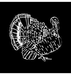 Hand-drawn pencil graphics turkey engraving vector