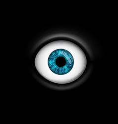 human eye isolated on black background vector image