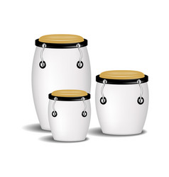 Congas band in white design with shadow vector