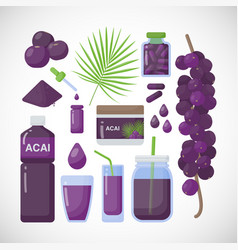 acai berries flat icons set vector image vector image