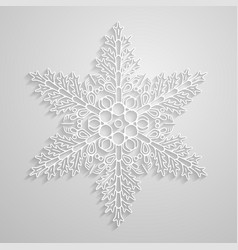 lined snowflake paper linear snowflakes vector image vector image