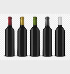 set 5 realistic black bottles of wine vector image