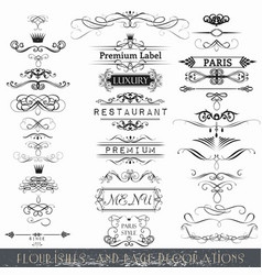 set of calligraphic elements and page decorations vector image vector image