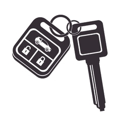 Car key security control vector