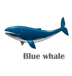 Cartoon blue whale vector image vector image