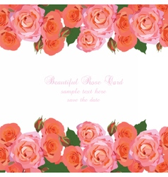 Delicate Pink Roses Card vector image