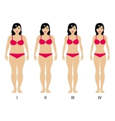 gradual weight loss vector image vector image