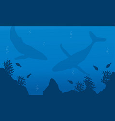Silhouette of whale collection underwater vector