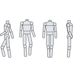 Model body vector