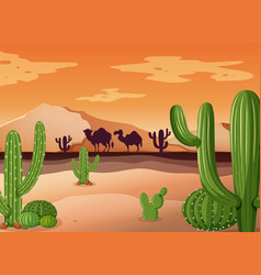 desert scene with cactus and sunset vector image vector image