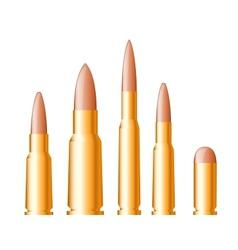 Set of gun bullets and ammunition vector