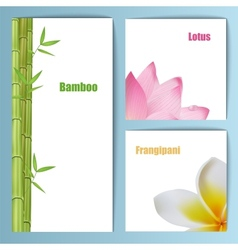 Exotic tropical flowers invitation card layout vector image