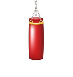 punching bag for boxing vector image vector image