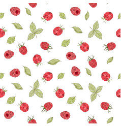 seamless raspberry pattern vector image