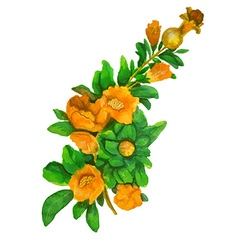 Yellow flowers vector image
