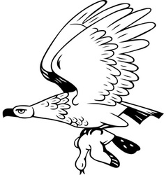 Eagle flies with prey vector